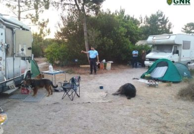 The Algarve is urging motorhome owners to park in official places.